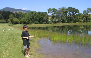 Fishing at Pond