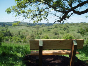 View and Bench at top of Hiking Trail